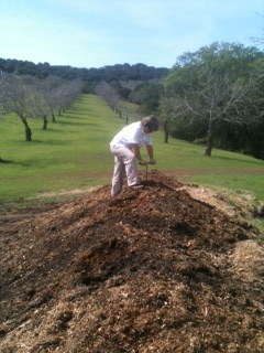 Manzanita Manor Organics, Dry Farmed Walnuts Paso Robles CA